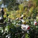 Salon Passionnément Jardin à Honfleur