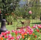13e édition de Garden en Fleurs à Cabourg