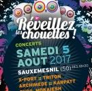 Festival Réveillez les Chouettes 2017 Sauxemesnil