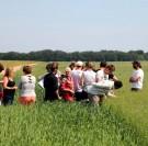 Le financement des aides à l'agriculture biologique pose problème