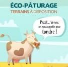 Agglo Seine Eure : des surfaces proposées pour l'écopâturage