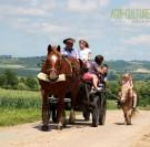 Les fermes normandes ouvrent leurs portes au Printemps