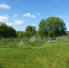 Bremontier-Merval : decouvrez 420 varietes de pommes ! verger conservatoire
