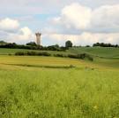 Politique agricole commune : 6 solutions pour obtenir des DPB