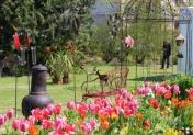 14e édition de Garden en Fleurs à Cabourg
