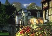 La 2ème Journée de la Pomme au Château du Breuil