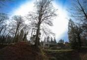 Domaine d'Harcourt : le pouvoir relaxant des arbres