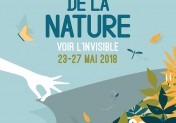 Fête de la Nature en Normandie : voir l'Invisible