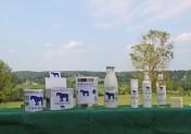 En Normandie, Chevalait interrompt sa vente de lait de Jument frais