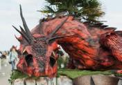 Festival Cidre & Dragon à Merville-Franceville 2018