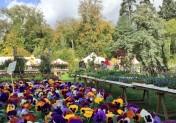 Les 12e Automnales d'Harcourt plantes et jardins
