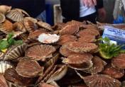 Ouistreham fête la Coquille et les produits de la Mer
