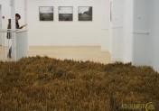 Une Fabrique du paysage à Yvetot jusqu'au 25 janvier