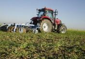 Glyphosate : une liste de solutions alternatives proposée aux agriculteurs