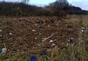 Estuaire de la Seine : appel à la mobilisation pour le nettoyage des déchets