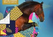 Equidays 2021 : désormais 6 villes du Calvados fêtent le cheval
