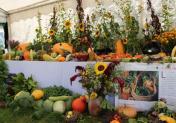 Festival des 1001 légumes à Beaumesnil