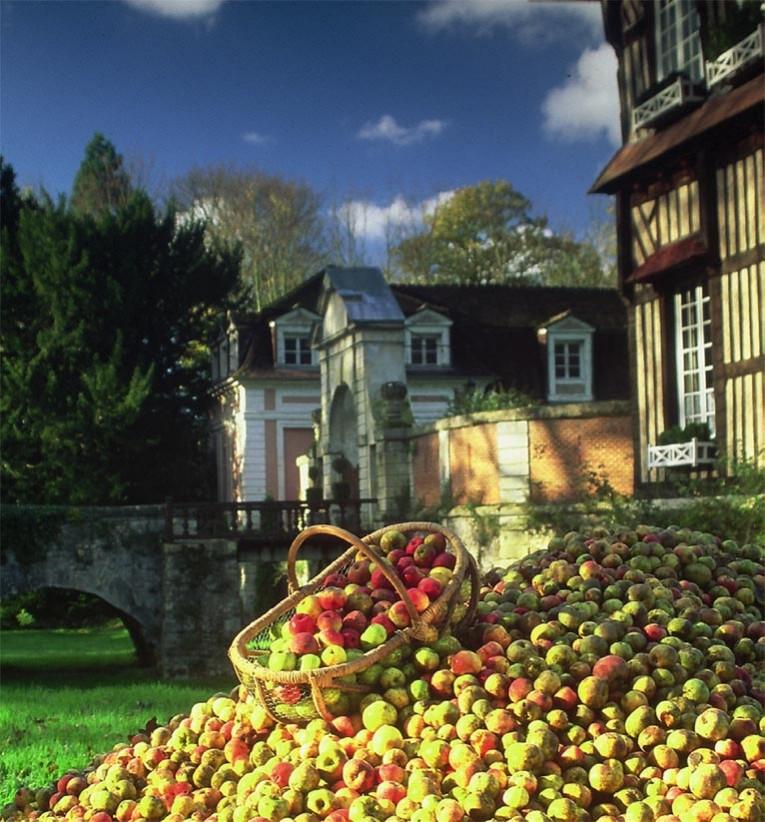 https://www.agri-culture.fr/sites/default/files/styles/765x341/public/article/galerie/2017-S45/chateau_du_breuil.jpg?itok=vmeYqMeg